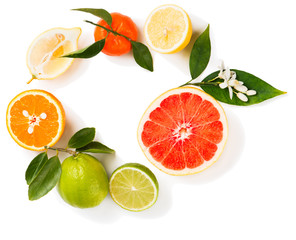 Different citrus fruit, top view.