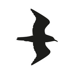 Silhouette of the bird flying in black color.