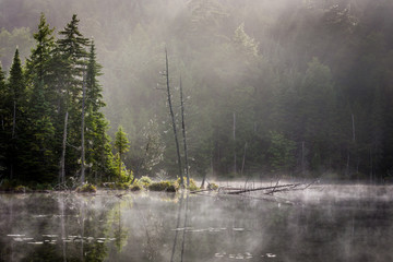 """Morning Mist"" The Adirondacks in upstate New York on an August morning. Not a sound could be heard. As the sunlight exposed the misty air, it was easy to imagine that it was all a dream..."