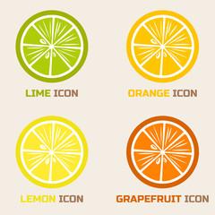 Citrus Icons in flat style. Orange, lemon, grapefruit and lime