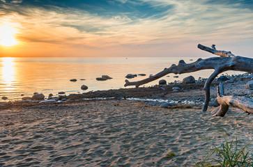 Stony beach of the Baltic Sea, Saulkrasti, Latvia