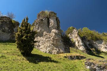 Auf dem Altmühltal-Panoramaweg