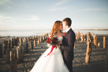Beautiful young wedding couple, bride and groom posing near wooden poles on the background sea