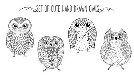 Vector set of owls, hand drawing sketches.