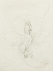 drawing of phoenix, hand drawing on old paper.