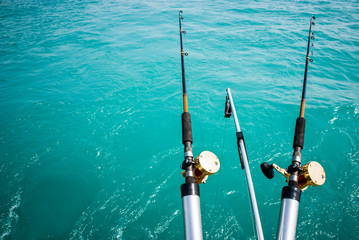 Two Fishing Poles with Copy Space