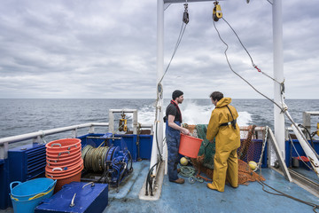 Research scientists and fisherman inspecting catch of fish on research ship