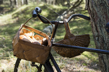 Bicycle with foraged mushrooms in baskets in forest
