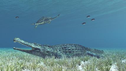 Sarcosuchus und Archelon