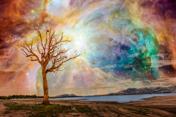 Alien planet fantasy landscape. Tree standing near lake with bright galaxy and stars shining in the sky. Elements of this image are furnished by NASA
