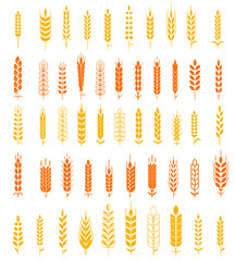 Wheat Ears Icons and Logo Set Natural Product Company and Farm Company Organic wheat, bread agriculture and natural eat.