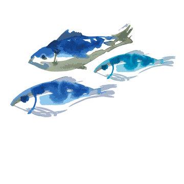 blue fish set watercolor illustration