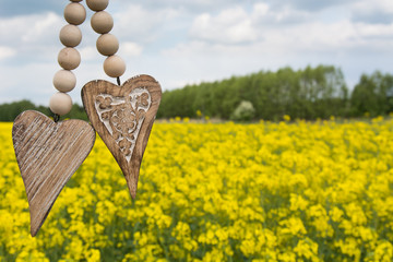 Two wooden heart on a background of rapeseed and blue sky