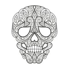 Adult coloring. Human skull.