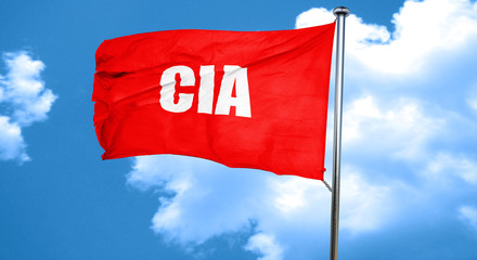 cia, 3D rendering, a red waving flag