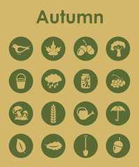 Set of autumn simple icons