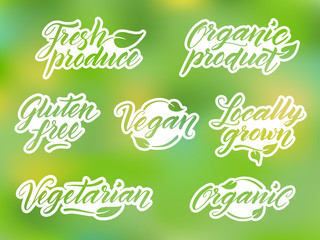 Hand drawn healthy food letterings. Label, logo template.