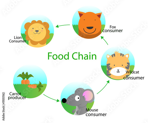 """Food chain for kids "" Stock image and royalty-free vector ..."