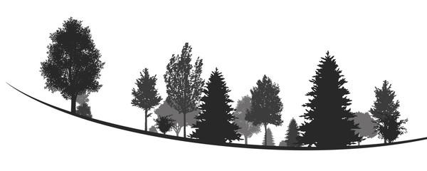 Silhouetten von Bäumen