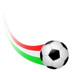 Calcio. Colore Italia. (2)