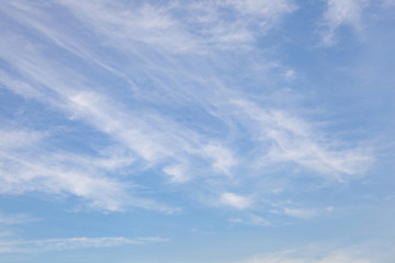 Natural cleared blue sky composition. The element of design.