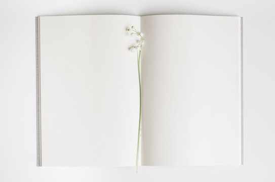 Open empty book with lily of the valley.