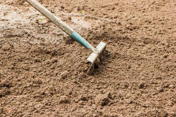 rake loosen dig up the ground
