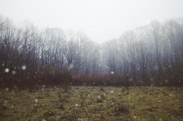 fantasy landscape fog background