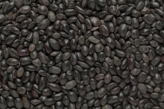 Organic Shikakai (Acacia concinna) seeds. Macro close up background texture. Top view.