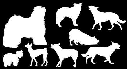 eight white isolated dog silhouettes