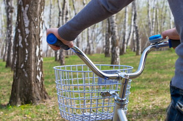 hands on the steering wheel bicycle, in a birch grove