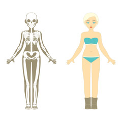 Female body. Human Skeleton system.