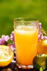 Orange juice, lemon, lime and flowers