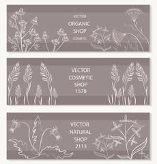 Floral, botanical decorative banner