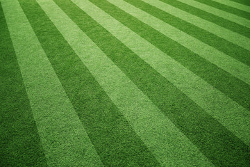 Sunny soccer playground artificial green grass background.
