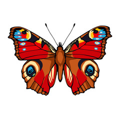 Peacock butterfly. Hand drawn vector illustration