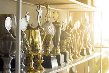 .Trophy awards for champion leadership
