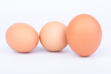 eggs on the white background