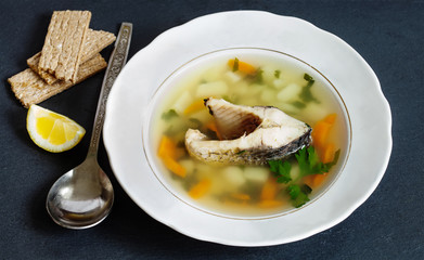 fish soup with vegetables. sliced carp, potatoes, carrot, herbs. copy space, soft focus