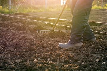 Man preparing soil for planting