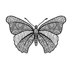 Butterfly. Doodle vector decorative summer design element
