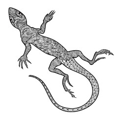 Lizard isolated. Hand drawn vector salamander with ethnic ornament