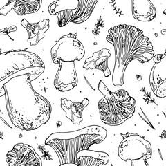Pattern of edible mushrooms. Autumn harvest wild mushrooms. Boletus edulis, chanterelles, oyster, twig trees, cones