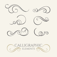 Collection of calligraphic elements. Decorative  borders. Graphi