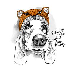 Basset Hound dog in a fox muzzle hat. Vector illustration.