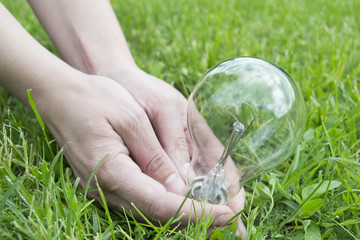 Female hand with a light bulb on a green grass