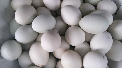 The white eggs in a market