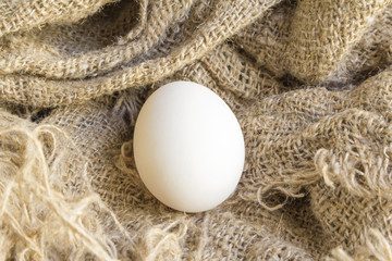 close-up white egg on a Brown canvas