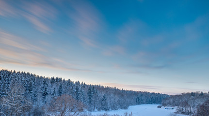 Fir tree forest landscape and sunset sky at snow winter season