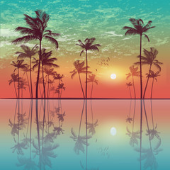 Wall Mural - Exotic tropical palm trees  at sunset or moonlight, with cloudy sky and reflection in water